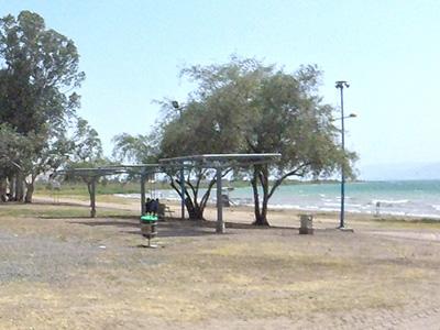 חוף גולן